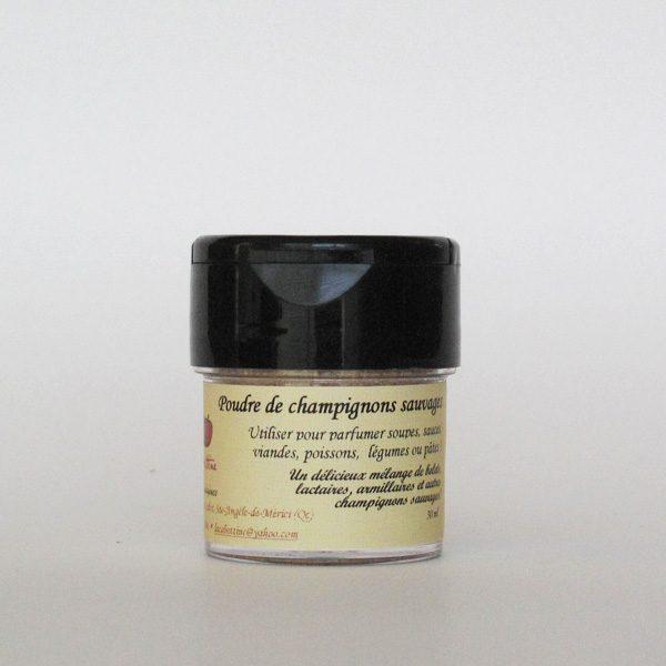 poudre-de-champigons-sauvages